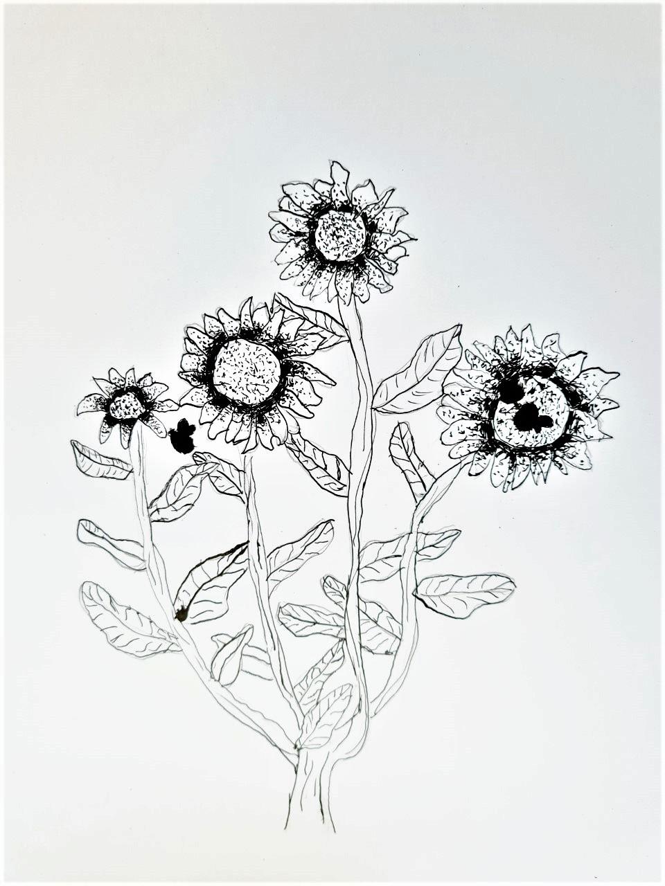 ZonnebloemenIefke (2)
