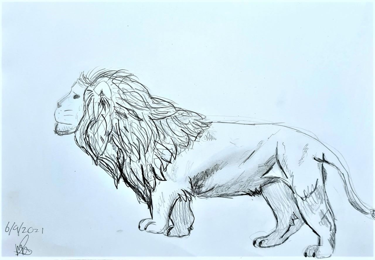 LeeuwMarloes (2)
